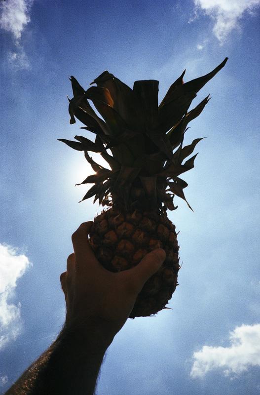 ananas_big